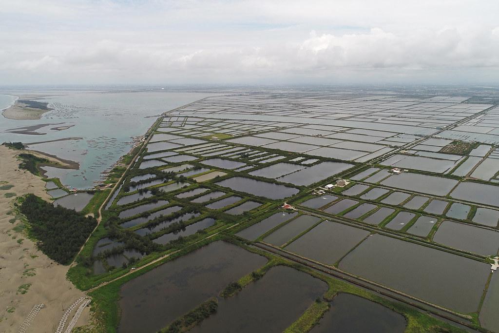 漁業署再審500公頃漁電共生 環團籲暫緩審查 讓綠能去「對的地方」
