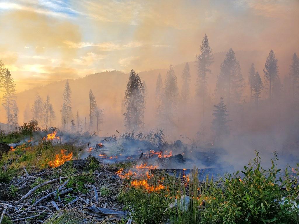 熱浪下美加西部野火肆虐 燒掉100萬個美式足球場面積